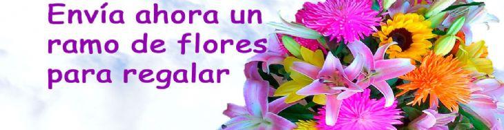 Env o a domicilio de ramos de flores para regalar - Ramos para regalar ...