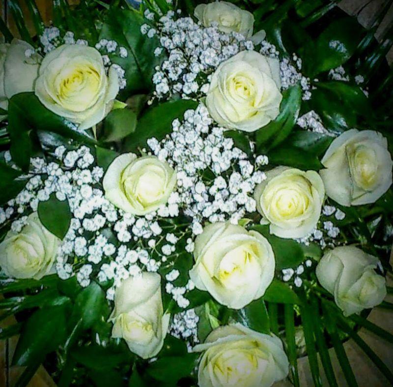 Precio de rosas blancas. Envío a Domicilio