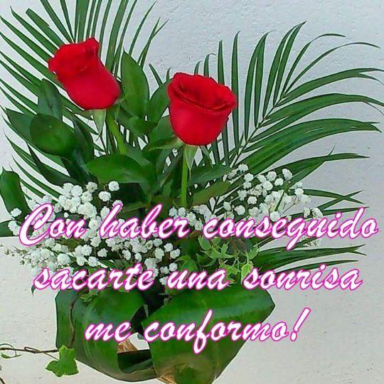 Frases de felicitaci n con un ramo de flores - Plantas pequenas para regalar boda ...