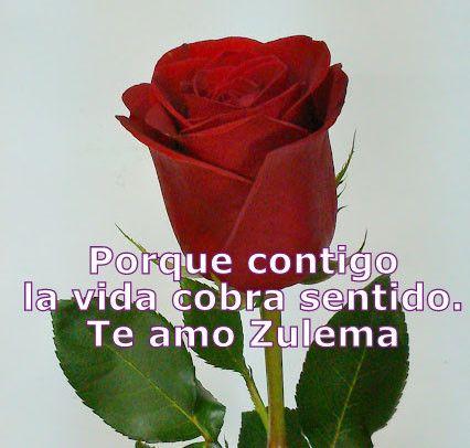 Te regalo una rosa poema