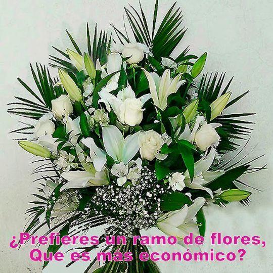 Frases De Pésame Para Una Corona De Flores Funeraria