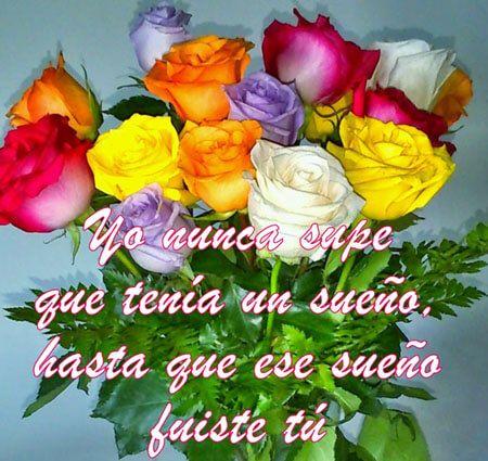 Frases De Amor Para Escribir Con Un Ramo De Flores